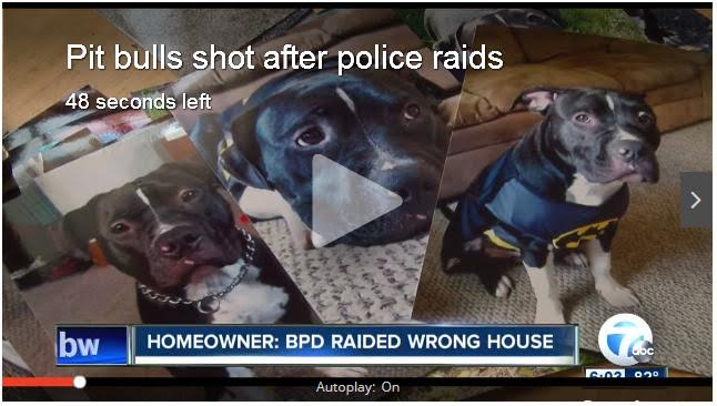 Buffalo_PD_Dog_Shooting